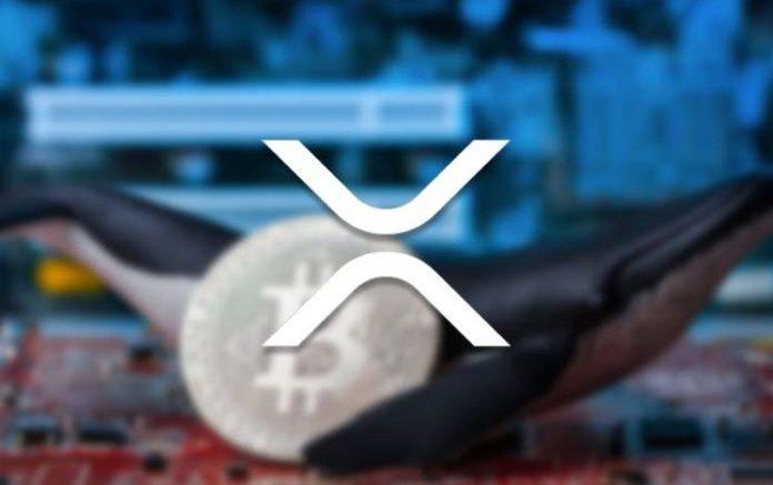 XRP-транзакция на $200 млн. обнаружена на крупнейшей криптобирже в Азии